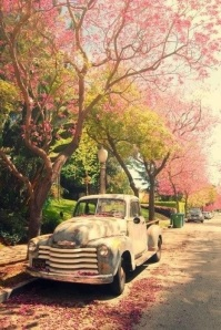 old car spring